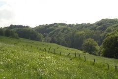 Limersbachtal Adscheid